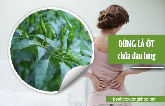 chữa đau lưng bằng thuốc dan gian