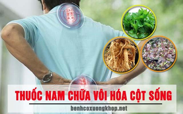 thuốc Nam chữa vôi hóa cột sống