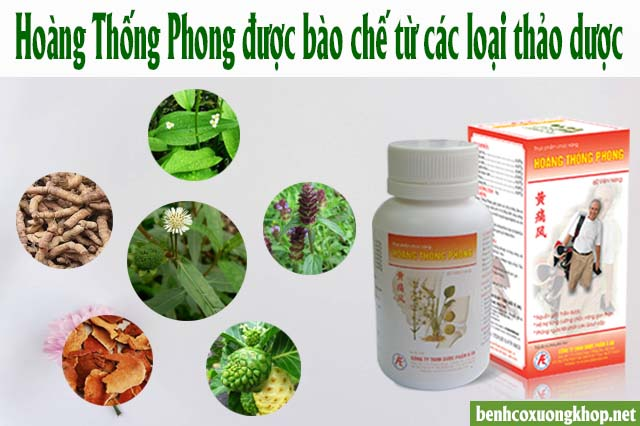 TPCN Hoàng Thống Phong