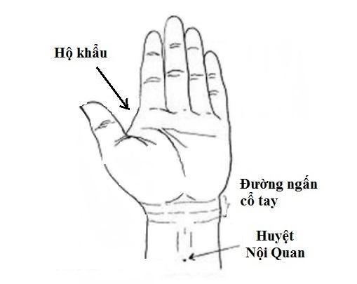 bam-huyet-chua-dau-co-tay-nhu-the-nao-3