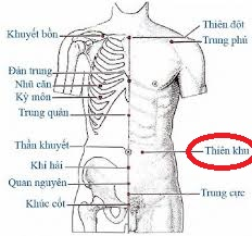 thu-phap-bam-huyet-chua-dau-lung-co-the-ban-chua-biet4
