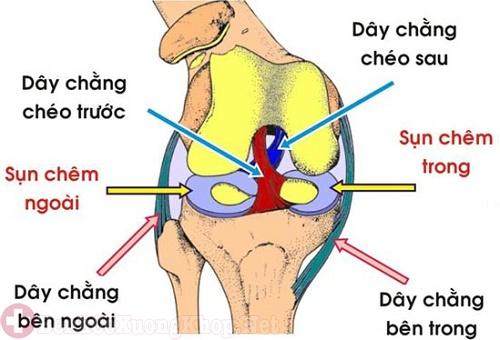 Viêm dây chằng khiến người già bị đau nhức xương khớp