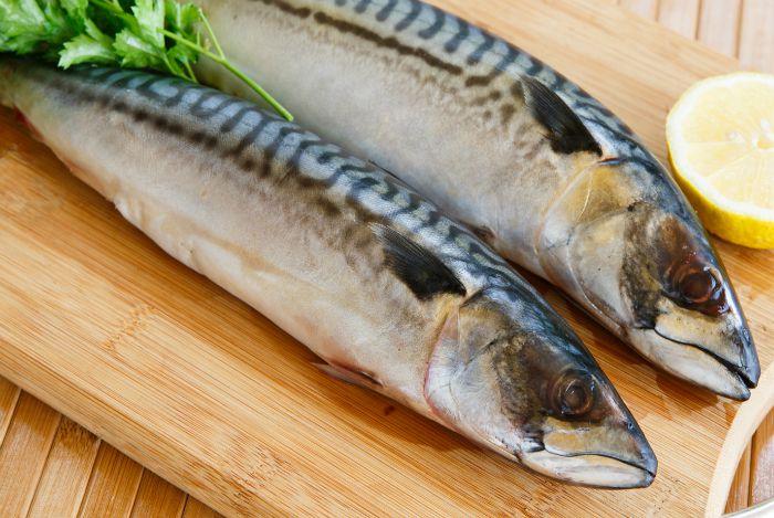 cá thu phù hợp cho người bị Gout