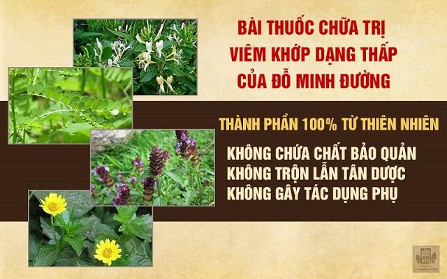 bài thuốc nam chữa viêm khớp dạng thấp của Đỗ Minh Đường an toàn, lành tính, thành phần từ thảo dược tự nhiên